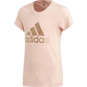 Adidas YG TR HLD Tee ED6323