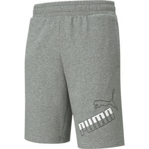 Puma Big Logo Shorts 10'' TR - 585775-03
