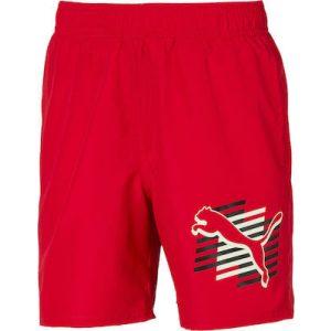 Puma ESS+ Summer Shorts Cat B - 843863-47