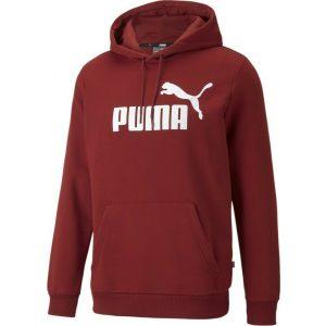 Puma Ess Big Logo Hoodie FL - 586687-22 syrrakos-sport